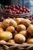 Patatas del oro de Yukon en el mercado Imagen de archivo libre de regalías