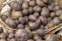 Patatas del rojo del mercado del granjero Imagenes de archivo