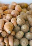 Patatas dulces Foto de archivo