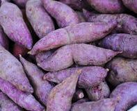 Patatas dulces rojas frescas Imagen de archivo libre de regalías
