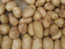Patatas en el bazar Fotografía de archivo