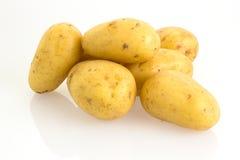 Patatas en el fondo blanco Imagen de archivo libre de regalías