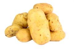 Patatas frescas aisladas Fotografía de archivo