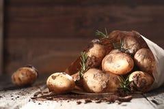 Patatas frescas de la granja con romero fotos de archivo