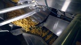 Patatas fritas de la mezcla de la maquinaria de la comida con los reforzadores del sabor metrajes