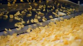 Patatas fritas fritas que caen en transportador industrial en una fábrica metrajes
