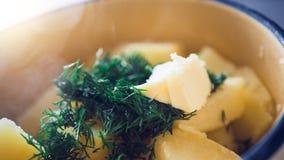 Patatas hervidas en una cacerola con eneldo fotografía de archivo