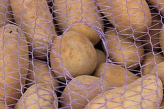 Patatas jovenes que serán utilizadas para la empanada o la compota o fritas como fritadas imagen de archivo