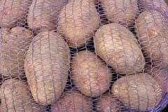 Patatas jovenes que serán utilizadas para la empanada o la compota o fritas como fritadas imagen de archivo libre de regalías