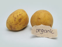 Patatas orgánicas Fotografía de archivo libre de regalías