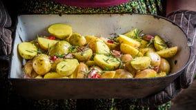 Patatas recientemente cocidas con ajo e hierbas Imagen de archivo libre de regalías