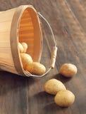 Patatas sin procesar en una cesta Fotos de archivo libres de regalías
