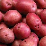 patate Immagini Stock