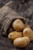 patate Fotografie Stock