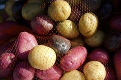 patate Fotografie Stock