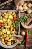Patate arrostite con le erbe, l'aglio ed il pepe Immagini Stock