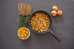 Patate bollite con i galletti fritti dei funghi in una padella Fotografia Stock Libera da Diritti