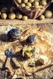 Patate bollite con la buccia con sale e burro fotografia stock libera da diritti