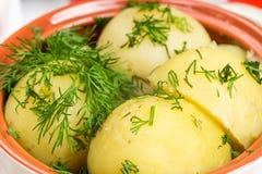 Patate bollite con la verdura Immagini Stock