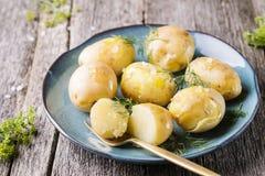 Patate bollite giovani con aneto e olio d'oliva Immagine Stock