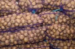 Patate in borse, verdure, agricoltura, agroindustria immagine stock libera da diritti