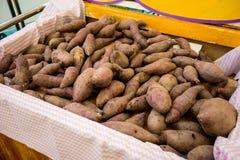 Patate dolci porpora fresche in contenitore di cartone al mercato di prodotti freschi Fotografie Stock Libere da Diritti