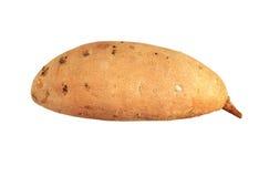 Patate douce d'isolement Image libre de droits