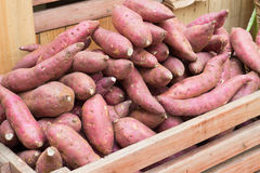 Patate douce dans la corbeille de fruits Photos libres de droits