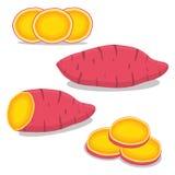 Patate douce rouge végétale entière Photographie stock