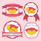 Patate douce rouge végétale entière Photos libres de droits
