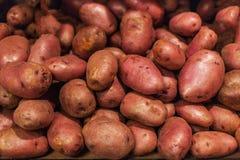 Patate grezze, priorità bassa dell'alimento Rosso organico crudo delle patate fresche Fotografie Stock