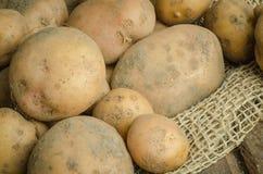 Patate organiche Fotografie Stock