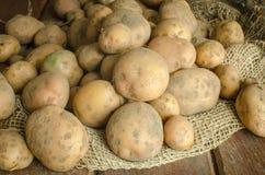 Patate organiche Fotografia Stock