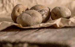 Patate organiche Fotografie Stock Libere da Diritti