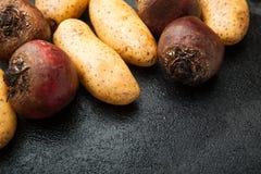 Patate organiche dell'azienda agricola e bietole rosse, spazio vuoto per testo immagine stock