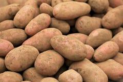 Patate organiche fresche al mercato degli agricoltori, Cile Immagine Stock Libera da Diritti
