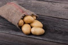 Patate raccolte fresche che si rovesciano da una borsa di tela da imballaggio, su un roug Fotografia Stock Libera da Diritti