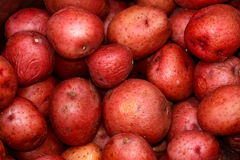 Patate rosse Immagine Stock