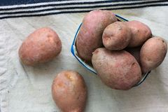 Patate rosse fresche di vista superiore di concetto dell'alimento biologico Immagine Stock