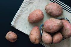 Patate rosse fresche di vista superiore di concetto dell'alimento biologico Fotografia Stock Libera da Diritti