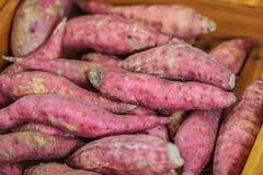 Patates douces japonaises organiques à vendre à la marque fraîche locale Photos libres de droits