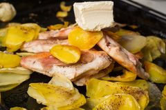 Patatine fritte arrostite appetitose, con il raccordo del pollo fritto immagini stock libere da diritti