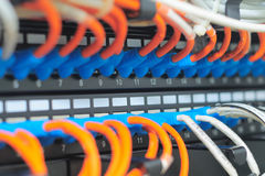 Patch cables. And network hub switch stock photography