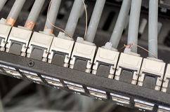 Patch cord panel Stock Photography