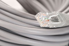 Patch cord Royalty Free Stock Photos