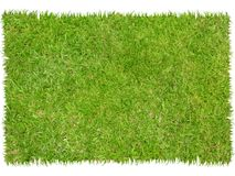 Patch of grass. With graphic dicut royalty free stock images
