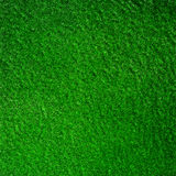 Patch of grass Royalty Free Stock Photography