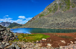 Patch of green grass on edge of a mountain lake Stock Photos