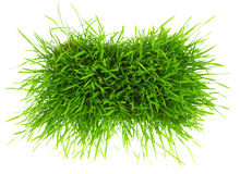 Patch of green grass Stock Photo