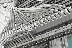 Patch panel of the 6th category royalty free stock images
